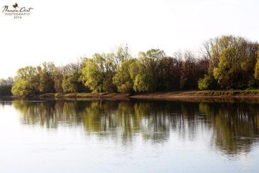 Tavaszi reggel a Dráván